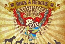 Events / OAA adoption events, fundraising events, and fun. #animals #nonprofit #events #oklahoma