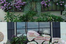 Virágládák az ablakba
