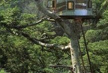 TREE HOUSE, SEA HOUSE & GREEN HOUSE