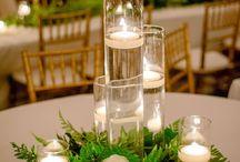 zvakes ant stalu