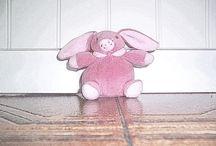 #ILMIOCONIGLIETTO / metterò semplicissime foto sul mio coniglietto