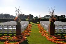 Aisle Design & Decor / by Monarch Weddings