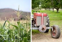 Farmers Use These / by Sandie Sturdivant Steadman
