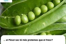 Pèsols / Guisantes  / Aquí trobaràs curiositats sobre els pèsols  / Aquí encontrarás curiosidades sobre los guisantes