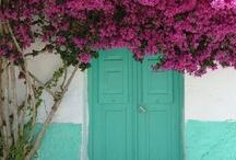 Color buganvilla / Mi color preferido.