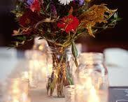 Wedding / by Traci Knight