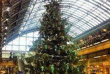 European City Christmas Trees