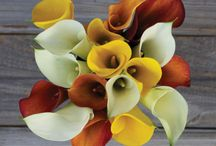 Flowers For Dad / Masculine flowers and bouquets for Fathers. Make Dad A Hero!
