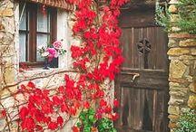 Estreita é a porta...apertando o caminho da vida, e raro são as que a encontram!