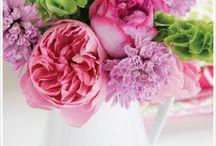 Flower dreams / My favorite flowers