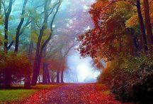 Autumn♥