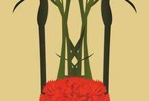 Carnation s
