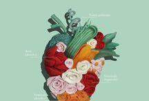 Iustraciones / Ilustraciones de diseño