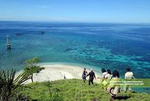 Manado Fun Trip - Wet & Adventure [operator : MANADO FUN TRIP] / November 18 - 25, 2013 Link : http://triptr.us/tc Bunaken