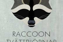 Craft&Drawing - Racoon