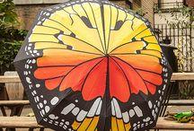 parapluie parasol ombrelle