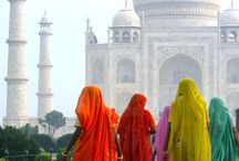 Insider's Guide to....North India / All things found in North India
