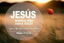 Mateo7:13