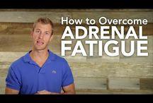 adrenal reset recipe ideas