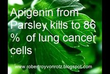 Parsley kill 86% of lung cancer cells