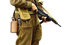 FZ Esercito Inglese