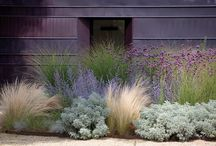 Landscaping Designs & Ideas