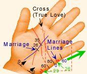 Liniite na rakata