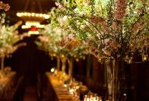 Hotel Weddings and Country Club Weddings