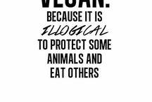 Vegan: Reasons to go vegan