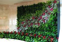jardín vertical garden