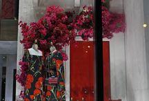 Windows Displays by Dolce & Gabbana