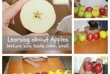 Apples / Prep