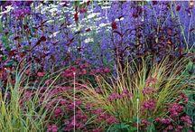 described garden ideas