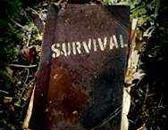 Survival storys