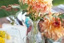 Wedding - Peach / by Sara Vega