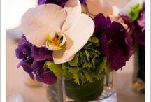 Sara's wedding!!!! / by Tara Teebagy