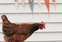 Happy at Home / For those who love the homesteading & sustainability lifestyle.   / by Mind Body Soul