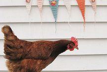 Chickens / Chicken Hens Rooster Chicken Coop Hen House