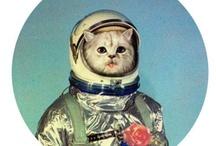 Kitties / by Abi Shaw
