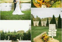 żółty ślub I yellow wedding