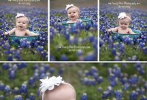 Bluebonnets / by Dawn Lopez