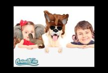 Make funny videos with your photos using the Animate Me App / Make funny videos from your photos for free with the Animate Me App. Make funny videos, talking photos, talking heads and talking pets.