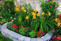 Garden pretties / by Tiffany Tindell