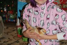 Neutrena Chicken Photo Contest / Vote here:  http://bit.ly/1MBMeLa Please vote for Sarah's photo in the Neutrena Chick Days photo contest. / by Frog Blossoms