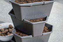 Kartoffelanbau zuhause: der Kartoffelturm / Wir erzählen euch heute von unserem Kartoffelturm, liebevoll Paul Potato genannt. Der Kartoffelanbau zuhause wird durch den Kartoffelturm ganz einfach gemacht.