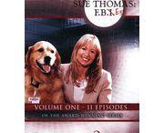 Sue Thomas: F.B. Eye