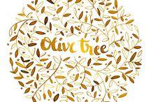 Olive Tree Coaching