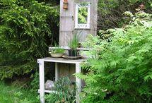 Min trädgård / Idéer till trädgården