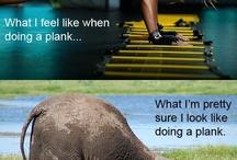 Fitness humour