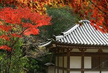Aki (Fall) / Autumn in Japan